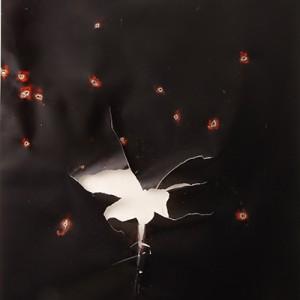 """""""A-Darter"""", 2014, ca. 230x127cm, Rocketogram / Color-Photogram, unique"""