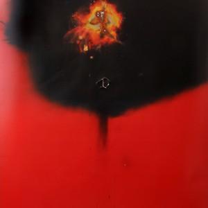 """""""Absolux"""", 2014, ca. 230x127cm, Rocketogram / Color-Photogram, unique"""