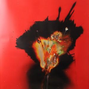 """Aglowing-Brilliant"", 2014, ca. 230x127cm, Rocketogram / Color-Photogram, unique"