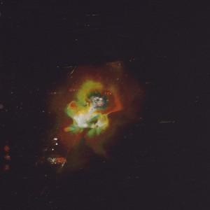 """Alkali-Tauraco-I"", 2014, ca. 250x180cm, colorphotogram-scan/Fine Art Print, 2+1AP / 110x80cm, 50+1AP"