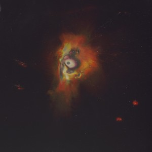 """Alkali-Tauraco-II"", 2014, ca. 250x180cm, colorphotogram-scan/Fine Art Print, 2+1AP / 110x80cm, 50+1AP"