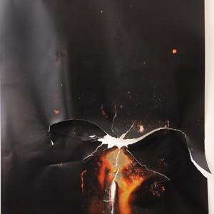 """""""Echoion"""", 2014, ca. 230x127cm, Rocketogram / Color-Photogram, unique"""