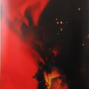 """""""Fable"""", 2014, ca. 230x127cm, Rocketogram / Color-Photogram, unique"""