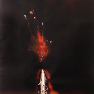 """GAR-11-Nuclear-Falcon"", 2014, ca. 230x127cm, Rocketogram / Color-Photogram, unique"