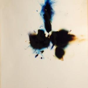 """""""Phython 5"""", 2006, ca. 180x130cm, Rocketogram / Color-Photogram, unique"""