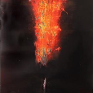 """HAVE-DASH"", 2014, ca. 230x127cm, Rocketogram / Color-Photogram, unique"