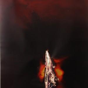 "Ice-Brand"", 2014, ca. 230x127cm, Rocketogram / Color-Photogram, unique """