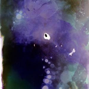 """""""Purple Loox"""", 2013, 240x180cm, Lumino-Fuseogram on 5x7 inch sheet film / C-Print analog, 2+1 AP"""