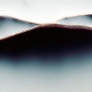 """REL II no.7"", 2013, ca. 90x110cm, photogram on colorfilm/C-Print, 2+1 AP"