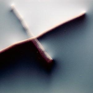 """REL II no.12"", 2013, ca. 90x110cm, photogram on colorfilm/C-Print, 2+1 AP"