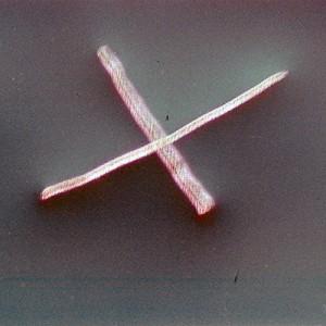 """REL II no.2"", 2013, ca. 90x110cm, photogram on colorfilm/C-Print, 2+1 AP"