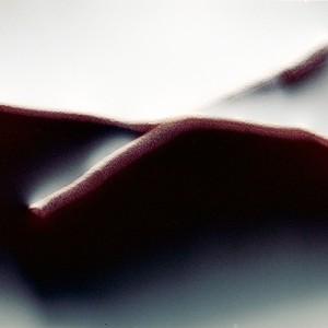 """REL II no.19"", 2013, ca. 90x110cm, photogram on colorfilm/C-Print, 2+1 AP"