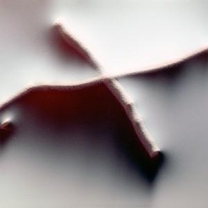 """REL II no.21"", 2013, ca. 90x110cm, photogram on colorfilm/C-Print, 2+1 AP"