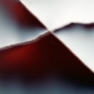 """REL II no.42"", 2013, ca. 90x110cm, photogram on colorfilm/C-Print, 2+1 AP"