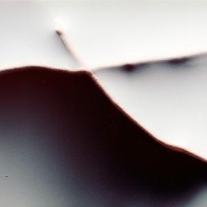 """REL II no.43"", 2013, ca. 90x110cm, photogram on colorfilm/C-Print, 2+1 AP"
