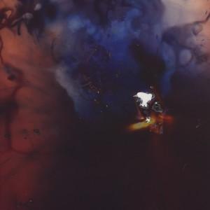 """Sea-Cat"", 2014, ca. 250x180cm,colorphotogram-scan/Fine Art Print, 2+1AP / 110x80cm, 50+1AP"