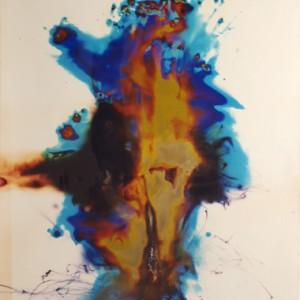 """""""Rafael Phython"""", 2006, ca. 180x130cm, Rocketogram / Color-Photogram, unique"""