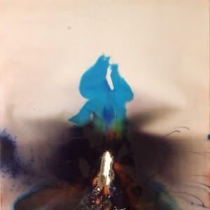 """""""Solar Splendor"""", 2006, ca. 180x130cm, Rocketogram / Color-Photogram, unique"""