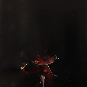 """Stormbringer"", 2014, ca. 230x127cm, Rocketogram / Color-Photogram, unique"