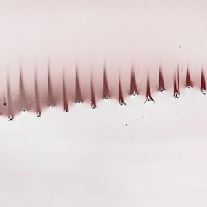 """SAWII no.4"", 2013, ca. 70x120cm, photogram on colorfilm/lambdaprint, 2+1 AP"