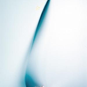 """KNFII no.13"", 2013, ca. 100x70cm, photogram on colorfilm/C-Print, 2+1 AP"