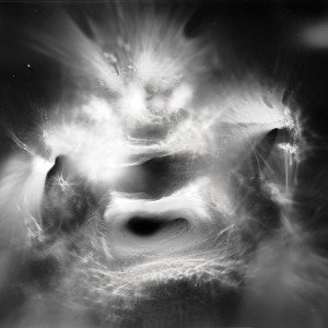"""Magic Lamp no.1″, 2017, ca. 100x130cm, photogram on colorfilm/C-Print analog, 2+1 AP"
